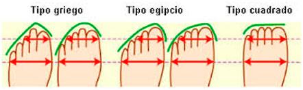 tipos de pies